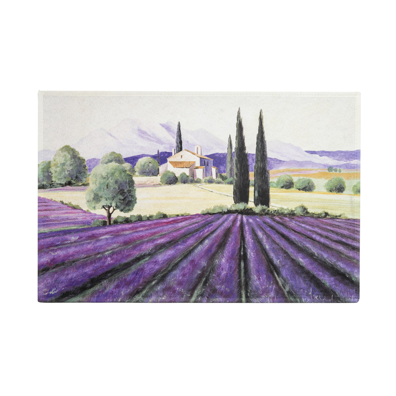 德国原产AKZENTE Gallery系列地毯脚垫门厅垫 普罗旺斯