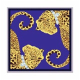 奥罗拉  丝巾(蓝)